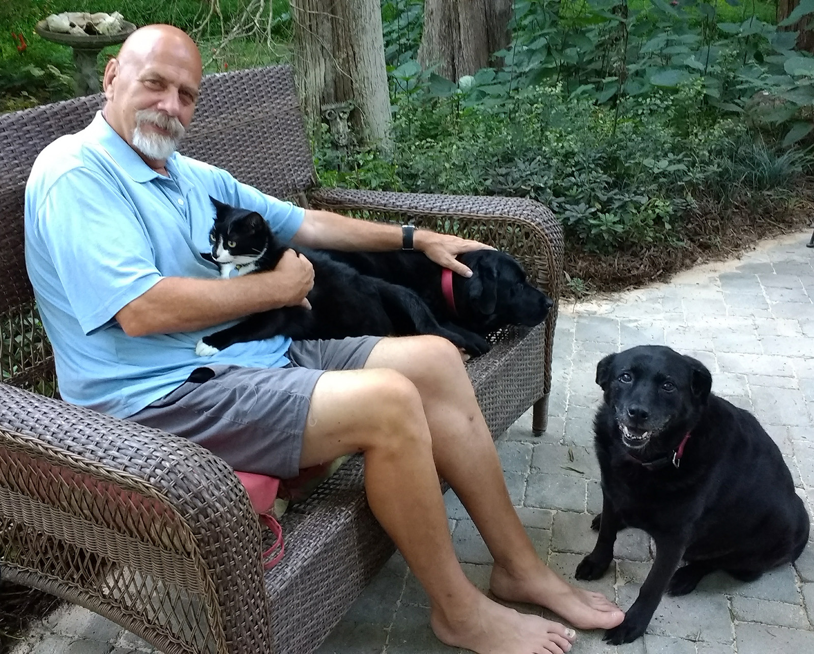 Steve Hurley mature reliable pet sitter Fearrington VIllage Pittsboro